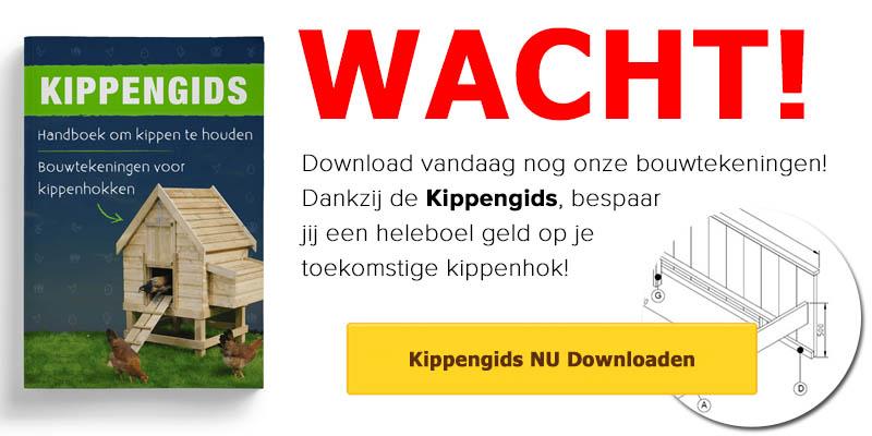 Download vandaag nog onze kippengids!