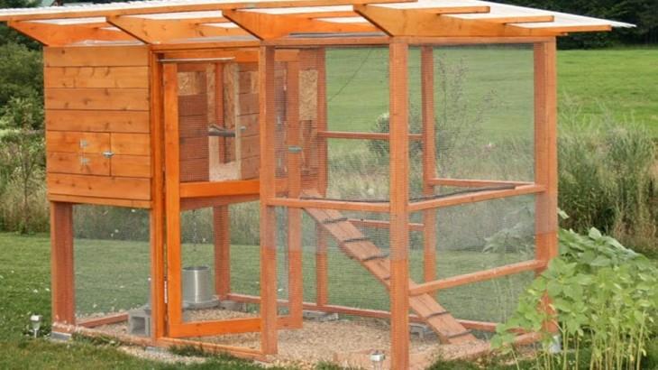 Kippenhok bouwen met kippengaas